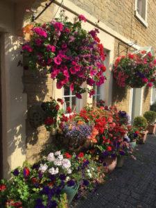 Flowers Melksham Credit: Visit Wiltshire