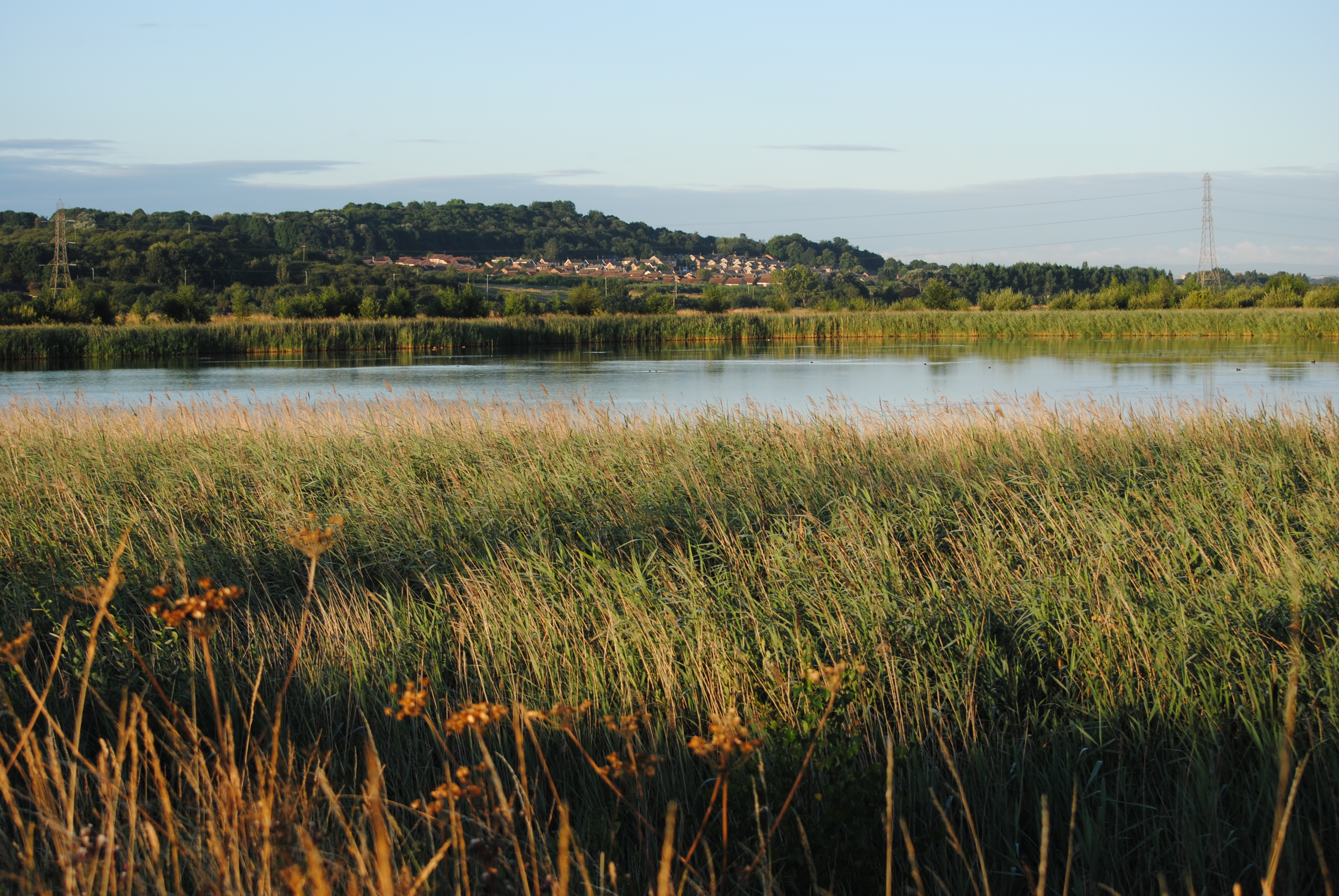 Fairburn Ings Nature Reserve - by Liberty Monkman