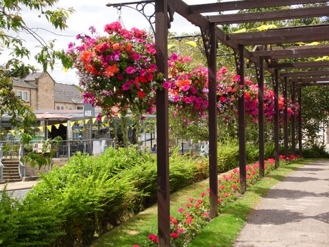 Wetherby in Bloom © Wetherby Town Council