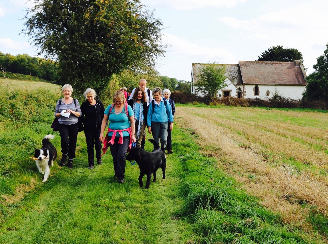 People walking with dogs at the Walking Festival © Ross on Wye Town Council